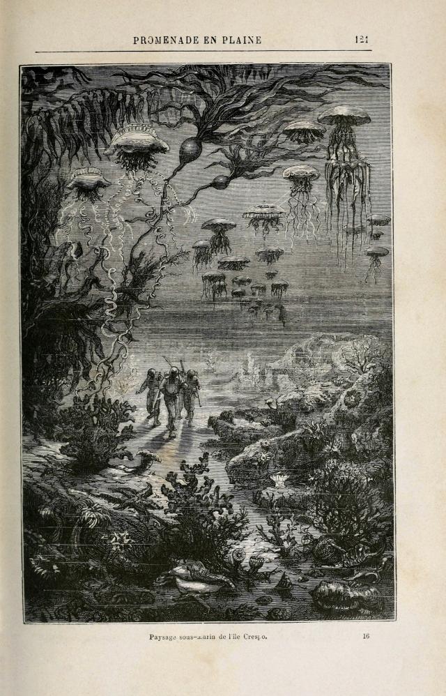 Ilustr. de Alphonse de Neuville para Veinte mil leguas de viaje submarino, de Jules Verne (1870)